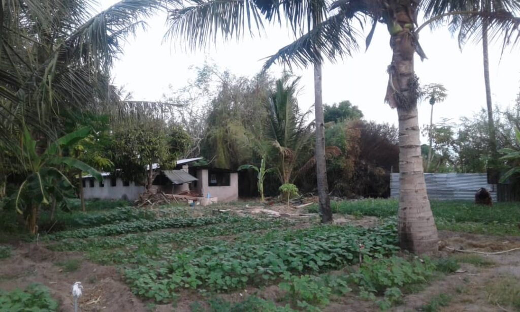 Tanzania Kamelot Crossfit Tetuán